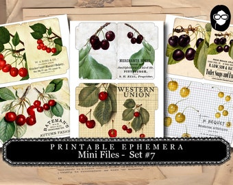 Cherry Print - Mini Files Set #7 - 3 Page Instant Download - ephemera pack, altered art kit, junk journal kit, blank journal cards