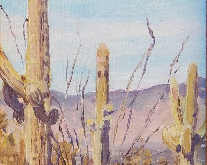 Featured listing image: Saguaro