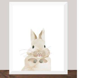 Hunny Bunny Print
