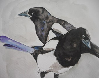 Curious magpies