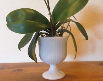 E.O. Brody Glass Cleveland Ohio USA Ribbed Pedestal Milk Glass Vase/Planter/Candleholder M3000 Pattern