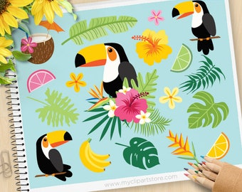 Tropical Toucan Clipart - Tropical Birds, Toucan, bird of paradise, margarita, summer, hibiscus flowers, starfish, Vector SVG clipart
