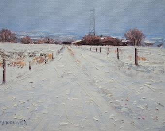 Farm, Somerset Snow