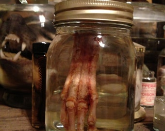 Goblin Hand in a Jar - Preserved Wet Specimen Taxidermy
