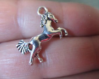 Set of 10 Horse Charms