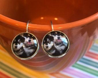 Husky cabochon earrings - 16mm