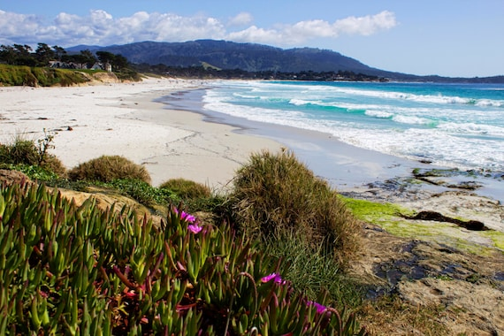 Carmel by the sea mountains coast ocean ice plants pink like this item mightylinksfo Images