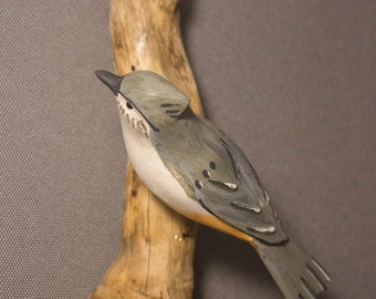 Tufted Titmouse - left facing