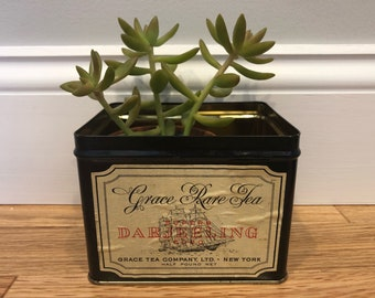 Black Vintage Tea Tin Tallship Succulent Planter