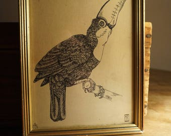 Framed illustration of a toucan with ink
