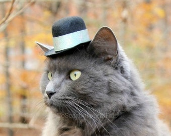 Cat Top Hat - Hat for Cats and Small Dogs - Silvery Blues - Snowflakes