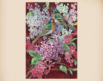 Birds With Lilac New 4x6 Vintage Postcard Image Photo Print FN10