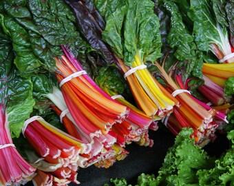 Chard Rainbow 50+ seeds - heirloom seeds - vegetable seeds - garden seeds - swiss chard seeds - rainbow chard seeds - chard seeds