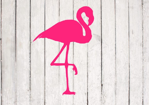 Flamingo Svg Flamingo Cut File Summer Svg Silhouette