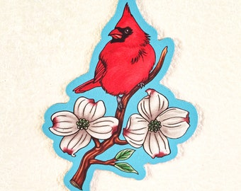 Northern Cardinal Perched on Flowering Dogwood Magnet