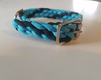 Turquoise/Black Small Dog Collar