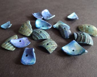 12-22mm Dyed Blue Shell Beads, 10-22mm wide, Midnight Blue, Drilled Seashells, Freeform Shape, Nautical, Shell Pieces, Sea Shells
