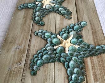 Starfish pallet. Shell starfish. Starfish art.