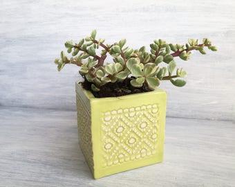 Green Ceramic lime pot-jar for seedlings-vase for succulent plants-ceramic favors-Gifts for the wedding
