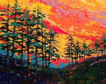 Sunset Pines (Print)