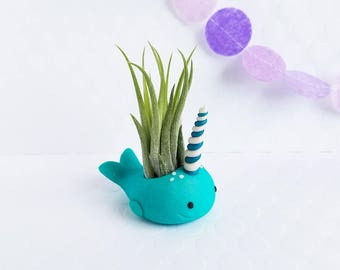 Narwhal Air Plant Holder, Air Planter, Best of Summer, Air Plant Gift, Gift for Her, Desk Accessory, Narwhal Gift Idea, Unique Gift for Him