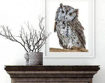 Archival Giclee Fine Art Print of Eastern Screech Owl created from an original watercolor painting by artist Joy Neasley