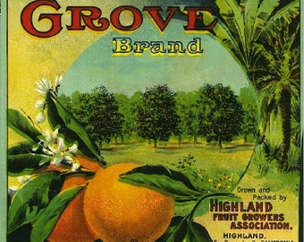 Highland- Grove Orange Citrus Fruit Crate Box Label Art Print