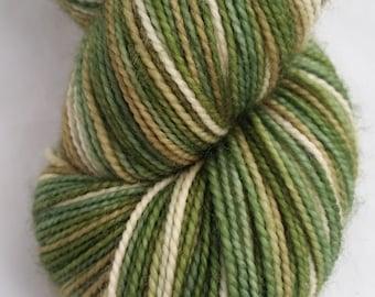 Spanakopita on Desmos - A Hand Dyed Sock Yarn