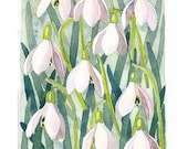 Snowdrops Art Print mothers day present mothers day wall art spring flowers print watercolour flower print wall decor trending art