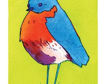 État des oiseaux - Bluebird