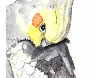 Cockatiel art print, nursery wall art, art above crib, gift for her, wall art kids room, bird art print, cockatiel wall art, watercolour art