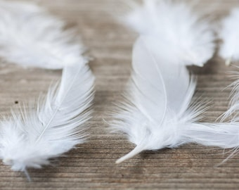 White Feathers 50pics Small Natural Fluffy Feathers Craft Feathers Boho Wedding Decorative Feathers Costume Feathers Bouquet Feathers