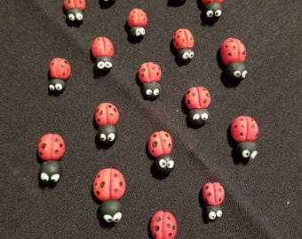 Ladybugs,Insects,cute little animals
