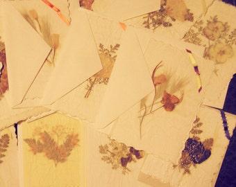 Handmade Greeting Cards PRESSED Desert Wild FLOWERS Set of 21 cards w/envelopes