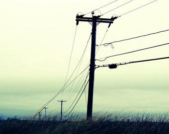 No Bird On A Wire - Power Lines - Somewhere landscape photograph - Wall Decor - Nature Photography