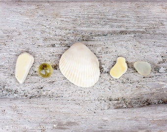 Beach Glass Photography - Sea Glass Photograph - Beach Glass - Sea Glass - Fine Art Photography Print - Yellow White Tan Beach Decor