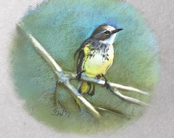 Original Painting Bird Cape May Warbler