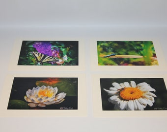 All Occasion Blank Cards - Flora & Fauna! - Set of 4 Photo Cards