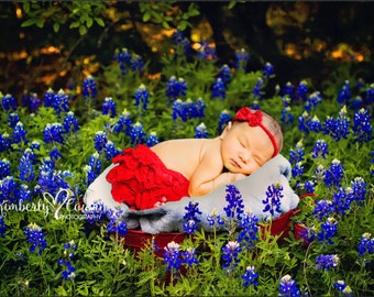 Instant - Digital Newborn Backdrop - Texas Spring Bluebonnets Flowers Bucket