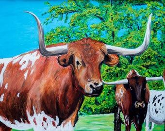 Texas Longhorns Landscape
