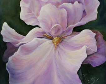 Iris  Original Oil painting 20 x 24 inches