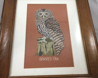 Vintage Framed and Matted Barred Owl Cross Stitch