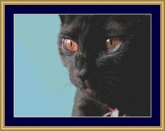Black Cat Cross Stitch Pattern /Digital PDF Files /Instant downloadable