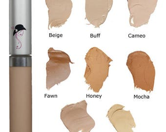 Wise Disguise Concealer