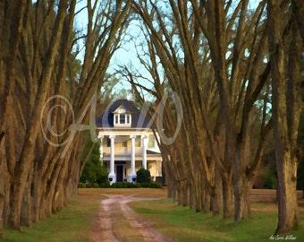 Plantation House in South Carolina (16 x 20 canvas)