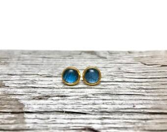 Butterfly jewelry, handmade butterfly studs, morpho butterfly, stud earrings, real butterfly earrings, button earrings, butterfly, jewelry