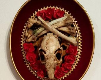 3 D dark red and leopard taxidermy rabbit skulls  and cross bones Valentine's wall frames