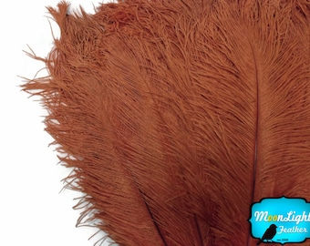 "Ostrich Feathers, 1/2 lb - 9-13"" DARK BROWN Ostrich Drab Wholesale Feathers (Bulk) : 2097-D"