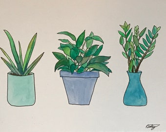 Illustration of 3 Plants
