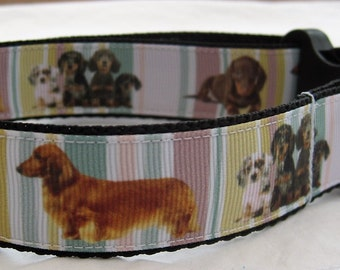 Dachshund sausage dog Dog collar matching lead available cartoon